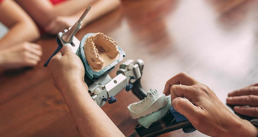 Zahnarzt klappt Modell der Kiefergelenke auf